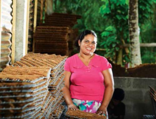 Nachhaltige Geldanlage – Sozial Investments über Mikrofinanzfonds am Beispiel von Sri Lanka